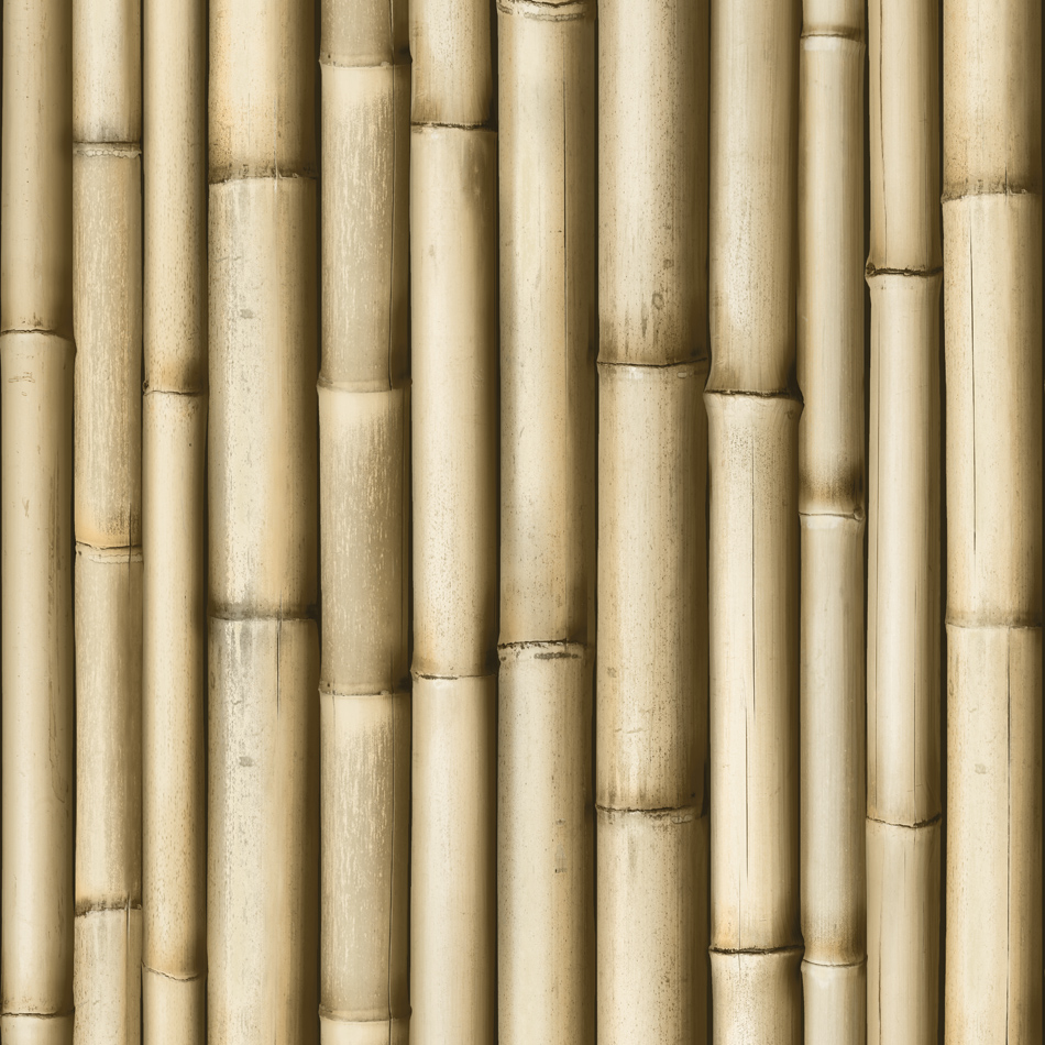 Designer wallpaper bamboo koziel murivamuriva for Designer wallpaper sale