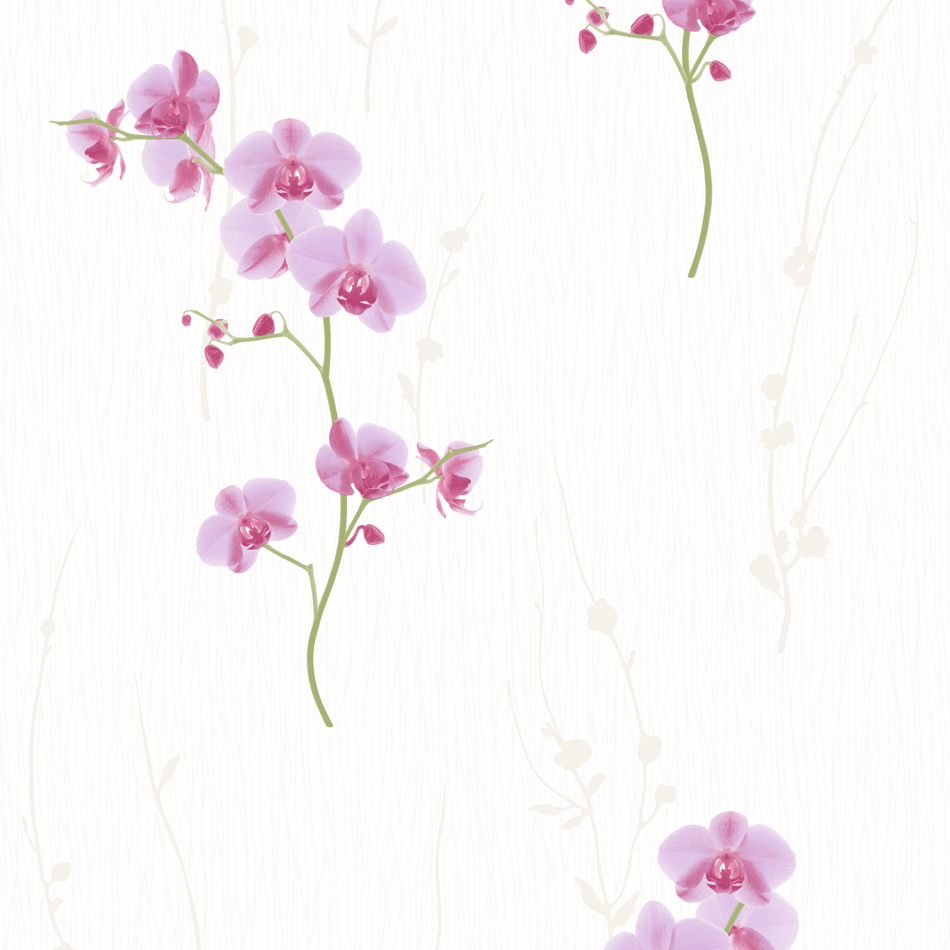 Floral Wallpaper Orchid