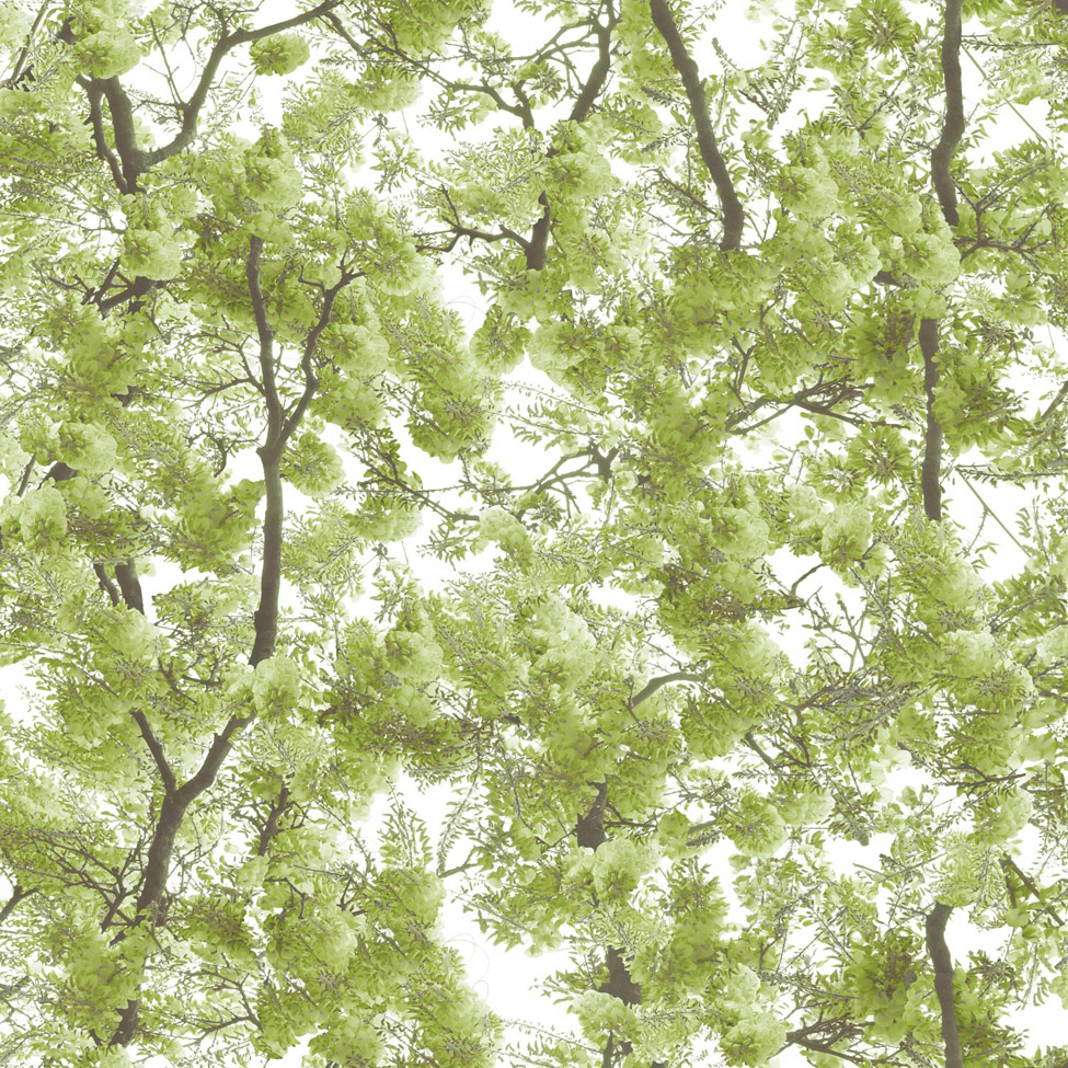Floral Wallpaper Canopy Green Muriva L33104 WP
