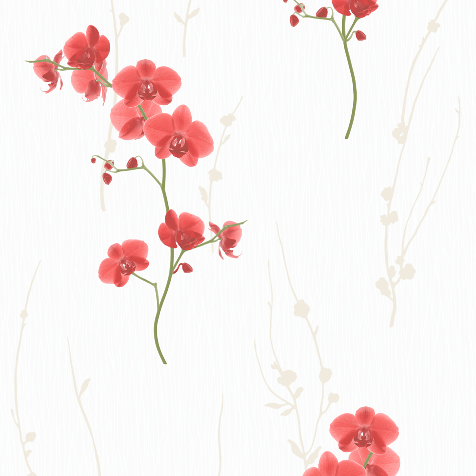 Wall Mural Photo Wallpaper Xxl Flowers Orchids Texture: Floral Wallpaper Orchid