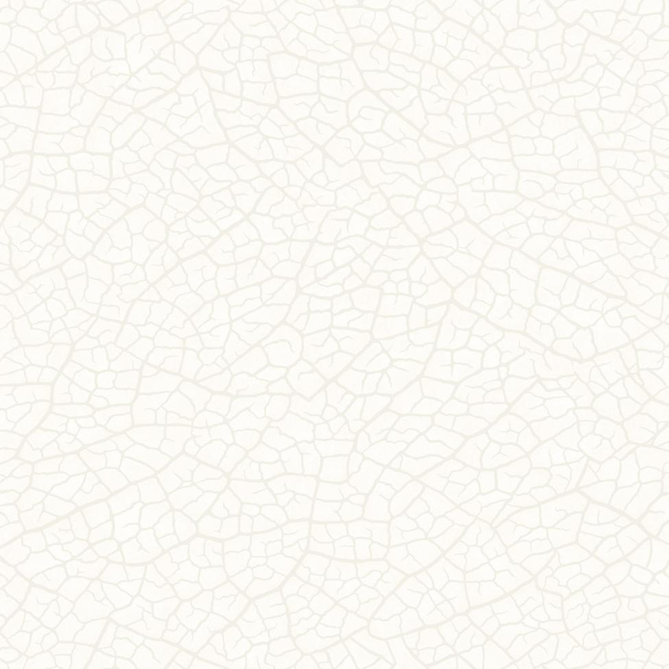 Modern Wallpaper Snake Skin White Muriva J45200 Wp