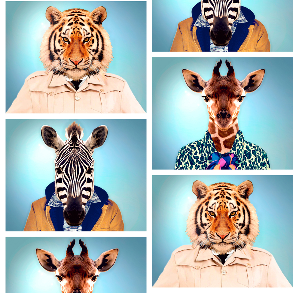 Modern Wallpaper Animal Photo Booth Muriva 601540