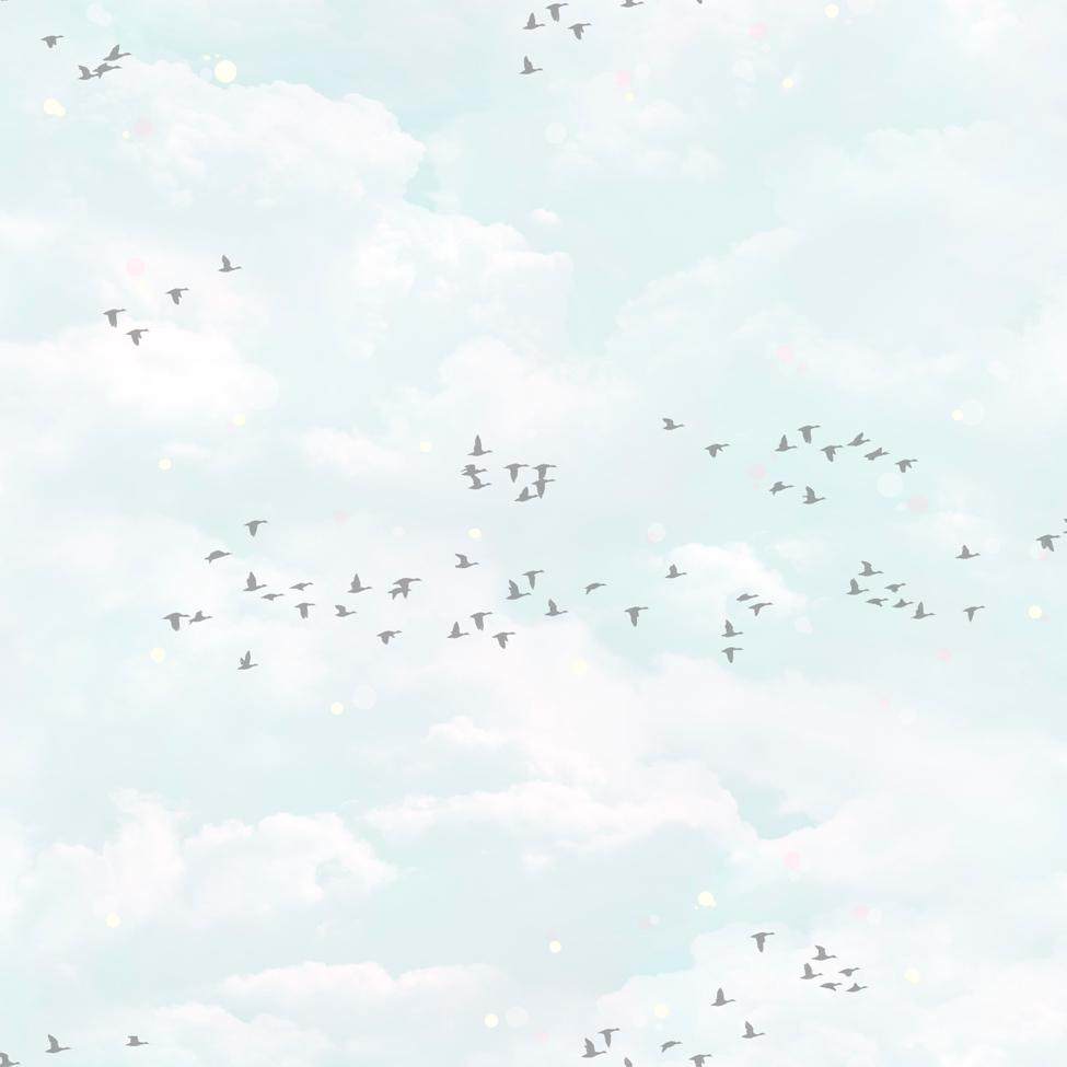 Modern Wallpaper Fly Away Muriva 102569
