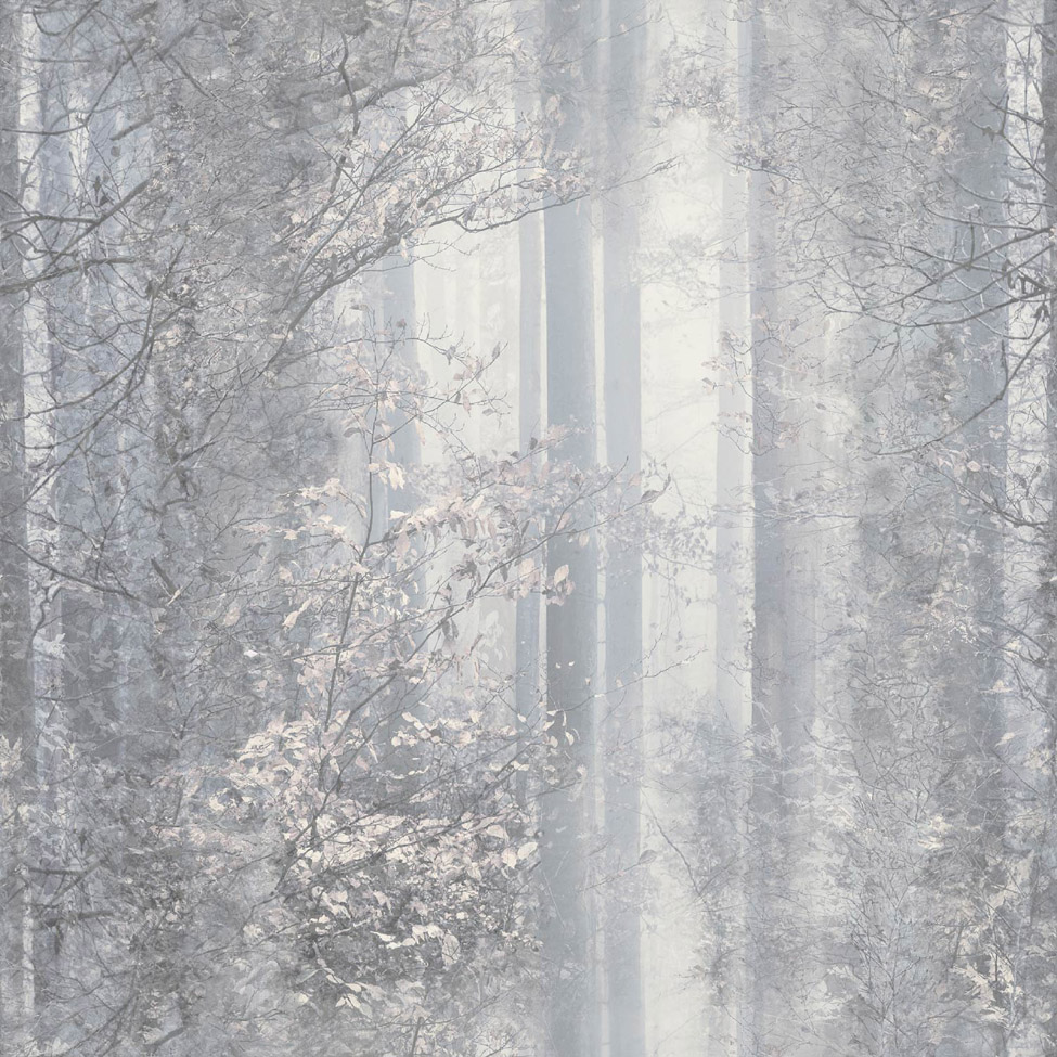 Mural Wallpaper Woodland Sepia Muriva L30507 WP