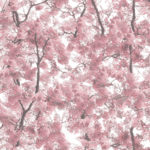 Floral Wallpaper Canopy Pink Muriva L33103 WP